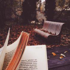 En hösteftermiddag då vissna blad prasslar sig tyst förbi ››› Danje Förlag #DanjeNovell