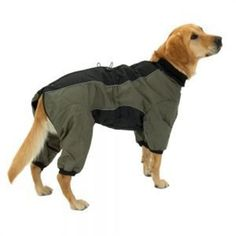 Hunde-Jacke-Hundemantel-Hundepullover-OVERALL-lang-II