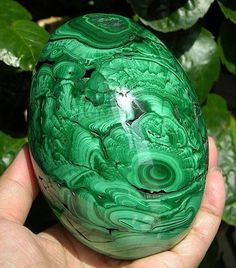 МАЛАХИТ Brilliant malachite egg from Mashamba West Mine, Congo. Minerals And Gemstones, Rocks And Minerals, Crystal Egg, Quartz Crystal, Beautiful Rocks, Mineral Stone, Rocks And Gems, Stones And Crystals, Gem Stones