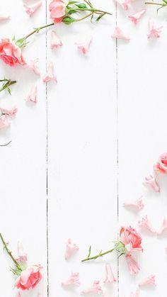 flower wallpaper for iPhone?flower wallpaper for iPhone?flower wallpaper for iPhone? Tree Wallpaper For Walls, Flowers Wallpaper, Flower Backgrounds, Screen Wallpaper, Mobile Wallpaper, Wallpaper Backgrounds, Iphone Backgrounds, Trendy Wallpaper, Wallpaper Iphone Tumblr Boho