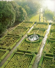 The gardens in her father's estate #theloyalistsdaughter