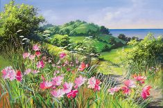 Summer wildflowers by Mary Dipnall
