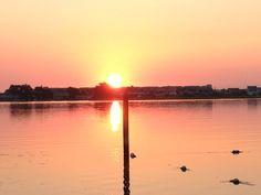 I wish every morning could start like this. Good morning Sunshine!