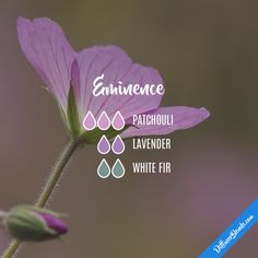 Eminence - Essential Oil Diffuser Blend