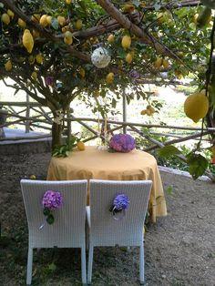 Your Wedding, By Ramona: Amazing location for symbolic wedding/union under the Lemon groves........ www.amalfiweddingplanner.it