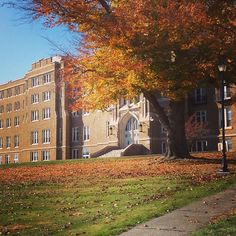The Dominican Center in Fall