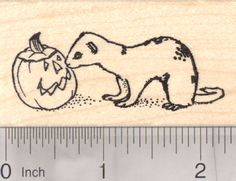 Halloween Ferret Rubber Stamp (H19208) $10 at RubberHedgehog.com
