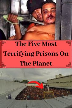 The Five Most Terrifying Prisons On The Planet Cute Birds, Prison, Planets, Weird, Places To Visit, Funny Quotes, Hilarious, History, Memes