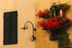 - Ben Linnell Photography: Window Boxes, Lucca, Italy