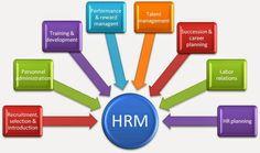 How HRM Software Enhances Organizational Efficiency