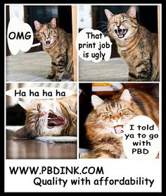Book Printing Companies, Magazines, Cats, Books, Prints, Animals, Journals, Gatos, Libros