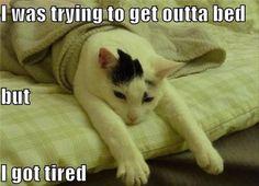 I got tired