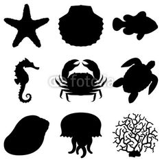 shell silhouette - Google Search