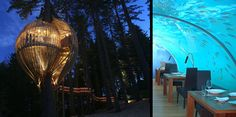 10 Unusual and Creative Restaurants: Treehouse (New Zealand), Restaurant (Maldives) Toilet (Taiwan), Greenhouse (Amsterdam), Ice (Dubai), Hospital (Latvia), Dinner in the Sky (Las Vegas)