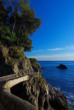 Scenic path along the Cinque Terre coast, Liguria