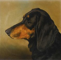 Head Study of a Dachshund, oil by Alfred Wheeler, British painter of dogs & horses, 1851-1932