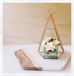 Glass terrarium & Marble platter • both @kmartaus • both deeeeelightful thanks for sharing @joyess ✨ #iheartkmart