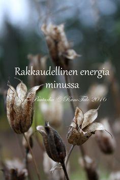 Runotalon voimakortti Rakkaudellinen energia minussa