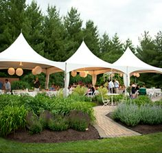 Summer Wedding Ideas For Budget Savvy Couples