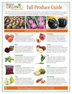 The Best Organic Fall Produce: Your Guide to Autumn by Boston Organics