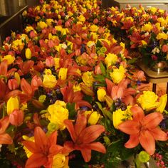 #Flowers #Events #Hotels