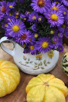 Bouquet, Autumn, Mugs, Tableware, Rural House, Dinnerware, Fall, Bouquets, Tumbler