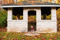 Can you spot the #BtownBeagle in this shelter at Cascades Park? #hellobtown #btownfall #beagle