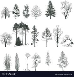 Tree silhouette collection vector image on – – Nina Oli. Wood Burning Patterns, Wood Burning Art, Tree Sketches, Pencil Art Drawings, Tree Drawings, Drawing Trees, Drawing Art, Landscape Drawings, Tree Art