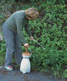 Vinegar wreaks havoc on weeds Attack weeds with a directed stream of vinegar percent acidity) mixed with a few drops of liquid soap. You may substitute equal parts water and isopropyl alcohol percent solution) for the vinegar. Fine Gardening, Organic Gardening, Gardening Tips, Brick Patios, Garden Pests, Plant Pests, My Secret Garden, Lawn And Garden, Garden Inspiration