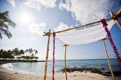 Weddings - Discover Fairmont Orchid, Hawaii, hotel in Hawaii and enjoy the hotel's spacious, comfortable rooms in Fairmont Hotel. Feel welcome to our elegant and luxurious hotel where we will make your stay an unforgettable experience. Fairmont Orchid, Kohala Coast, Hawaii Hotels, Fairmont Hotel, Coconut Grove, Hawaii Wedding, Big Island, Outdoor Furniture, Outdoor Decor