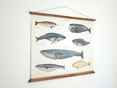 LARGE A1 Whales Canvas Poster vintage illustration by ARMINHO
