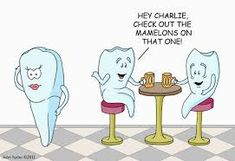 dental humor - Google Search