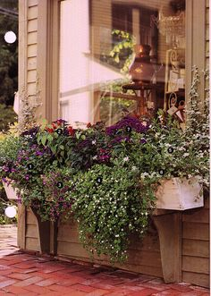 Curb Appeal Love the extra long brackets on the window box. For the low windows in the front Container Plants, Container Gardening, Garden Windows, Patio Windows, Porch Garden, Bedroom Windows, Herb Garden, Pot Jardin, Window Boxes