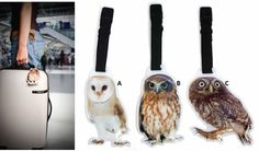 What are you staring at? Owl luggage tags