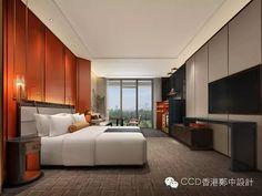 CCD創享新紀元——2016年會致辭(上)