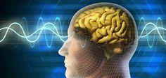"""Disso Voce Sabia?: Físicos chocam o mundo ao afirmarem que: """"nossos pensamentos afetam o mundo físico"""""""