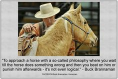 Cowgirl And Horse, My Horse, Horse Love, Horse Tips, Cowgirl Quote, Show Jumping Horses, Show Horses, Horse Photos, Horse Pictures