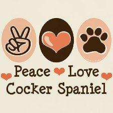 American Cocker Spaniel Rescue