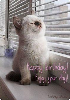 Happy birthday greetings Catlady Killmouskie JENNIFER WINGET - EDUCRATSWEB.COM 2020-05-30 spiderimg.amarujala.com https://spiderimg.amarujala.com/assets/images/2019/05/29/750x506/_1559130886.jpeg