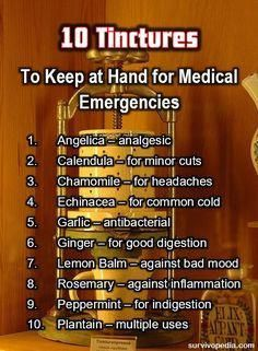 Survival Herbal Recipes From Our Ancestors Our ancestors used these plants well for medical purposes, and you need to know how to prepare them too. Here's how to turn any of them them into natural remedies. Natural Health Remedies, Natural Cures, Natural Healing, Herbal Remedies, Natural Foods, Natural Products, Natural Treatments, Natural Oil, Holistic Healing