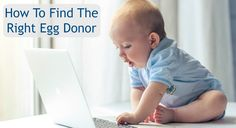 How to Find the Right Egg Donor | Fairfax Egg Bank #donoregg #eggdonor #ivf #infertility