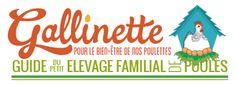 Gallinette ®
