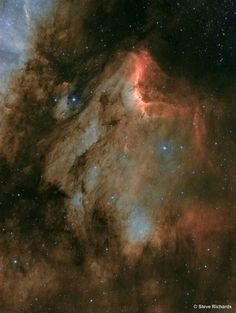"""The recognizable profile of the Pelican Nebula soars nearly 2,000 light-years away in the high flying constellation Cygnus, the Swan. Also known as IC 5070, this interstellar cloud of gas and dust is appropriately found just off the """"east coast"""" of the North America Nebula (NGC 7000), another surprisingly familiar looking emission nebula in Cygnus. Both Pelican and North America nebulae are part of the same large and complex star forming region, almost as nearby as the better-known Orion…"""