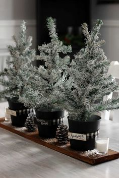 rustic christmas tree How to Create an inexpensive Christmas centerpiece using Dollar Tree mini Christmas trees Dollar Tree Christmas, Dollar Tree Crafts, Christmas Trees, Burlap Christmas, Country Christmas, Rustic Christmas Crafts, Pallet Christmas, Christmas Snowman, Christmas Wedding