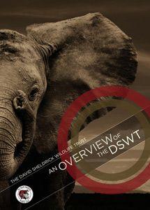 124a8ef9948af Sheldrick Wildlife Trust  Haven for Elephants   Rhinos