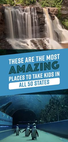 These Are The Most Amazing Places To Take Kids In All 50 States