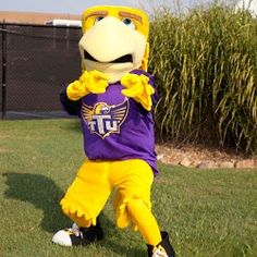Tennessee Tech Golden Eagles mascot, Awesome Eagle.