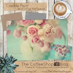 """Today I have a new Fine Art Texture set called """"Crackle"""". These textures look really nice on still life images, but you can also use t..."""