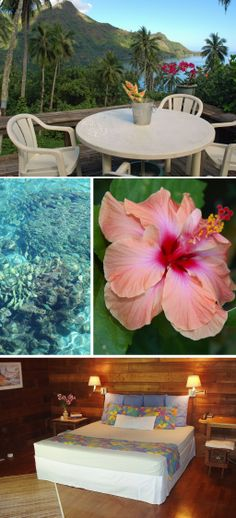 Moorea Villa #Polynesia #Vacation