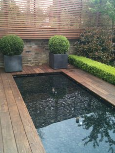i love tiny pools Shelley Hugh-Jones Garden Design Modern Garden Design, Contemporary Garden, Garden Landscape Design, Modern Landscaping, Backyard Landscaping, Landscaping Ideas, Garden Pool, Water Garden, Porches